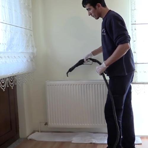 ev petek temizliği